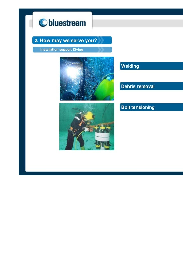 2. How may we serve you?  Installation support Diving                                Welding                              ...