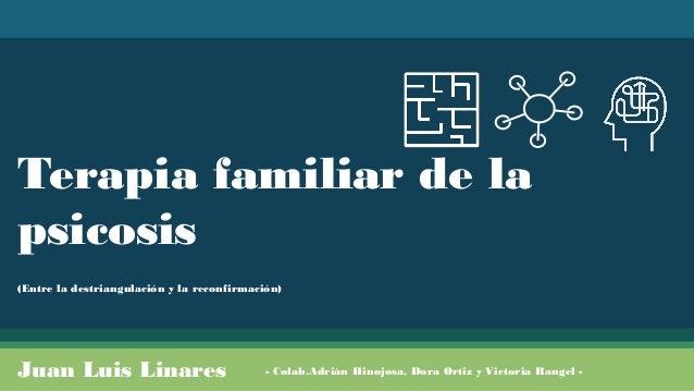 Terapia familiar de la psicosis (Entre la destriangulación y la reconfirmación) Juan Luis Linares - Colab.Adrián Hinojosa,...