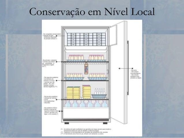 Conservação em Nível Local No Congelador ( Evaporador) • Colocação das bobinas de gelo reutilizável; • Descongeladas: colo...