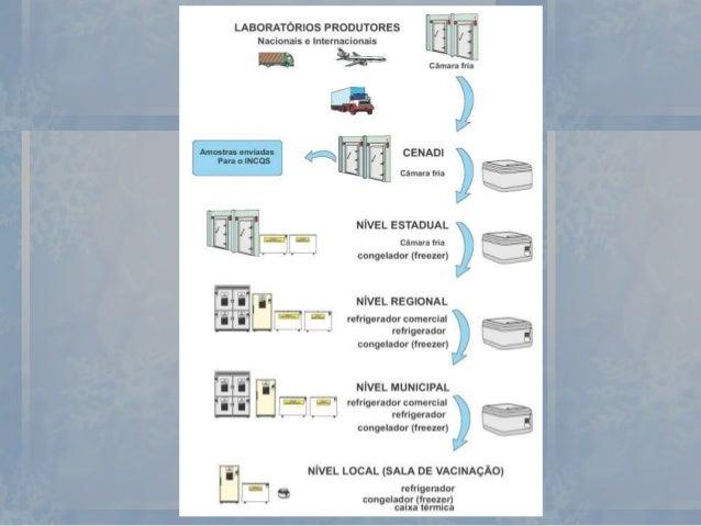 Conservação em Nível Municipal Câmara Fria • São ambientes especialmente projetados para a armazenagem de produtos predomi...
