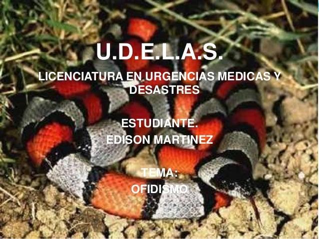 U.D.E.L.A.S.  LICENCIATURA EN URGENCIAS MEDICAS Y  DESASTRES  ESTUDIANTE.  EDISON MARTINEZ  TEMA:  OFIDISMO