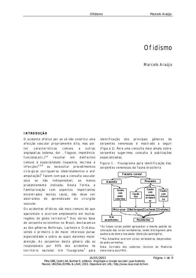 Ofidismo Marcelo Araújo16/05/2003 Página 1 de 9Pitta GBB, Castro AA, Burihan E, editores. Angiologia e cirurgia vascular: ...