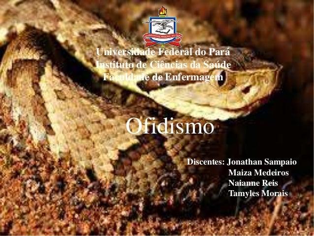 Universidade Federal do Pará Instituto de Ciências da Saúde Faculdade de Enfermagem Ofidismo Discentes: Jonathan Sampaio M...