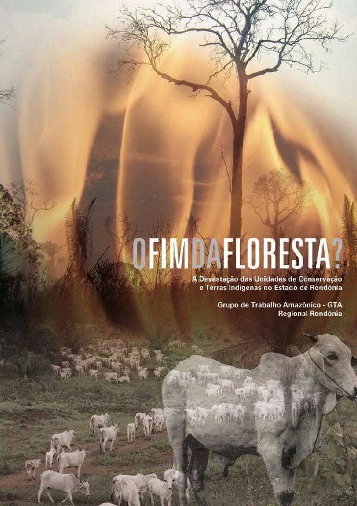OFIMDAFLORESTA? A Devastação das Unidades de Conservação   e Terras Indígenas no Estado de Rondônia         Grupo de Traba...