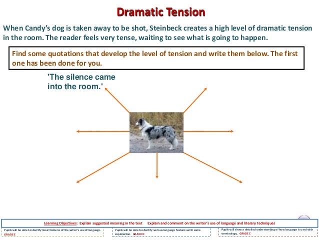 how does steinbeck create tension The shooting of candyâs dog objective: how does steinbeck use language to create dramatic tension euthanasia brief class discussion what is euthanasia.