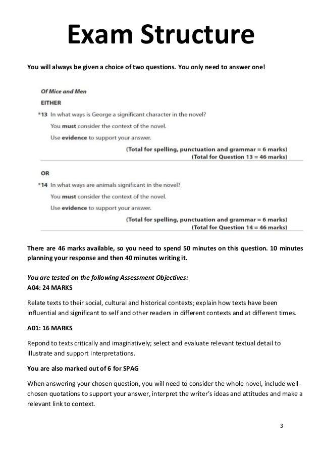 A grade a level english literature essay