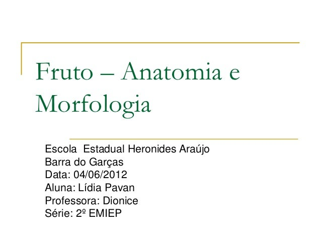Fruto – Anatomia eMorfologiaEscola Estadual Heronides AraújoBarra do GarçasData: 04/06/2012Aluna: Lídia PavanProfessora: D...