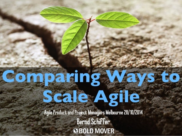 Comparing Ways to  Scale Agile  Agile Product and Project Managers Melbourne 28/10/2014  Bernd Schiffer