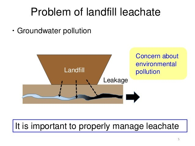 Leachate Management Of Constructed Wetlands Yuka Ogata