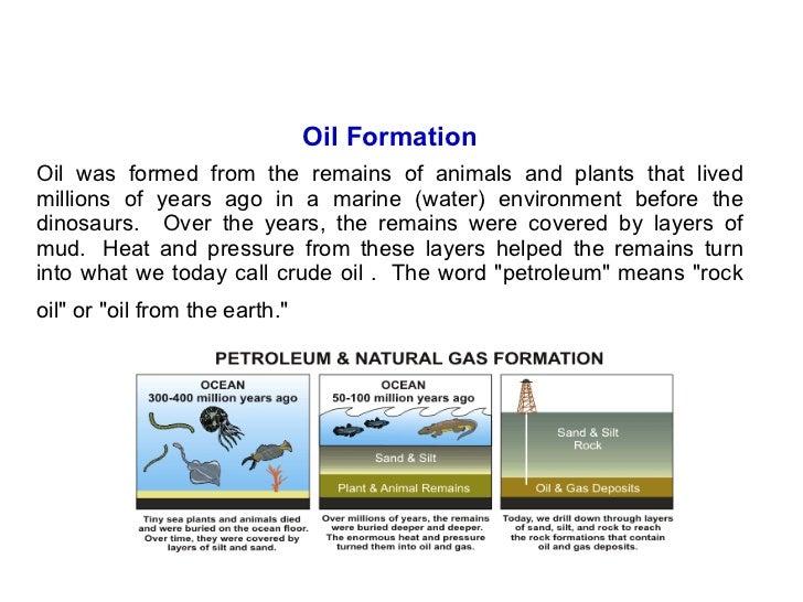 Brief Introduction into Oil & Gas Industry by Fidan Aliyeva Slide 3