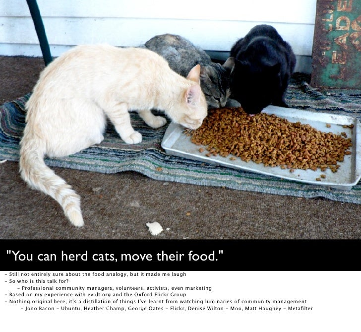 """""""You can herd cats, move their food."""" -   Still not entirely sure about the food analogy, but it made me laugh -   So who ..."""