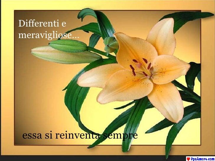 Differenti e meravigliose… essa si reinventa sempre