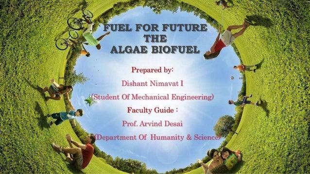 fuel for future : algae biofuel