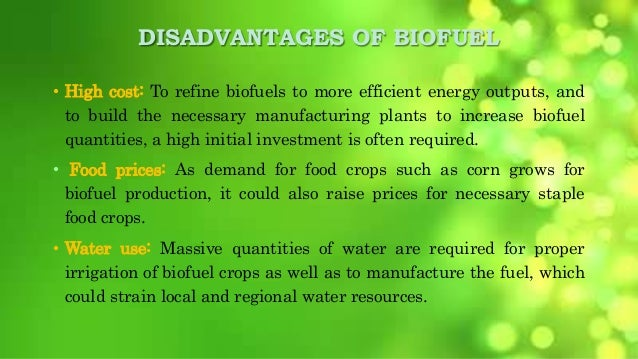 benefits and hindrances of algae essay Benefits of using algae  many peer-reviewed papers in the scientific literature suggest that the direct life cycle ghg emissions are lower than fossil fuels but.