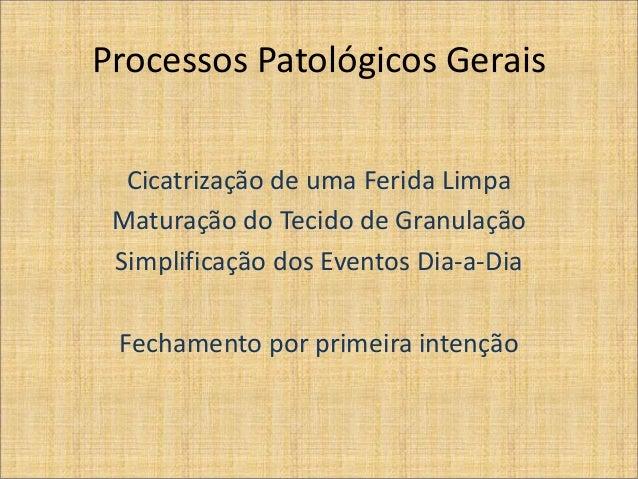 Processos Patológicos Gerais Cicatrização de uma Ferida Limpa Maturação do Tecido de Granulação Simplificação dos Eventos ...