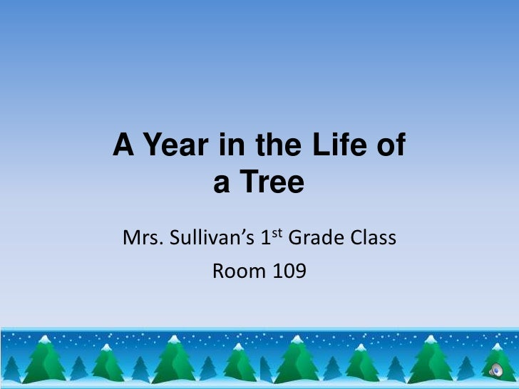 A Year in the Life of a Tree<br />Mrs. Sullivan's 1st Grade Class<br />Room 109<br />
