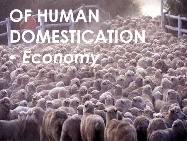 OF HUMAN DOMESTICATION • Economy