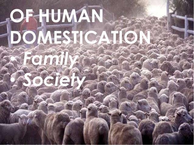 OF HUMAN DOMESTICATION • Family • Society