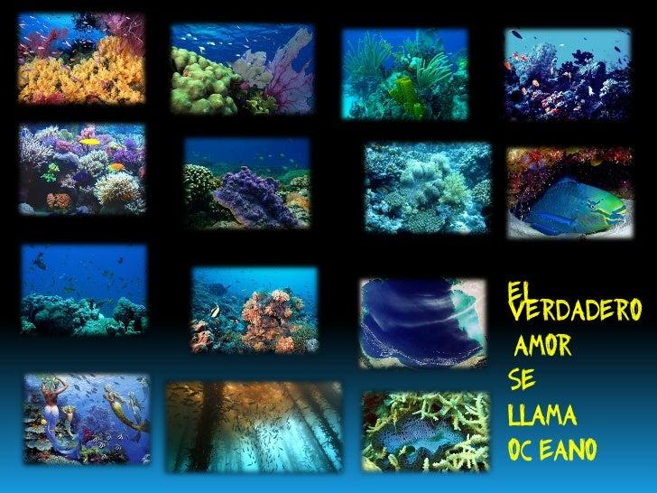 OH MARE MIO coleccion azul profundo Slide 2