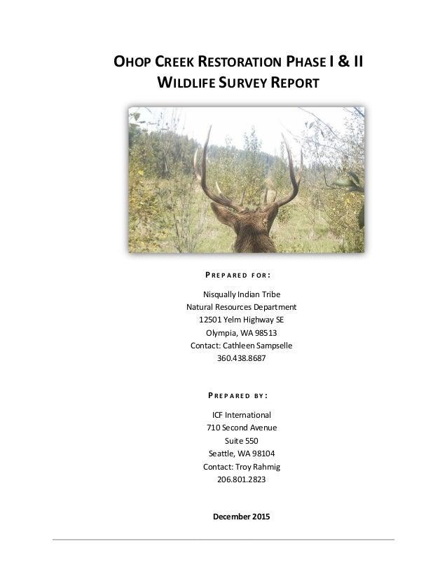 OHOP CREEK RESTORATION PHASE I & II WILDLIFE SURVEY REPORT P R E P A R E D F O R : Nisqually Indian Tribe Natural Resource...