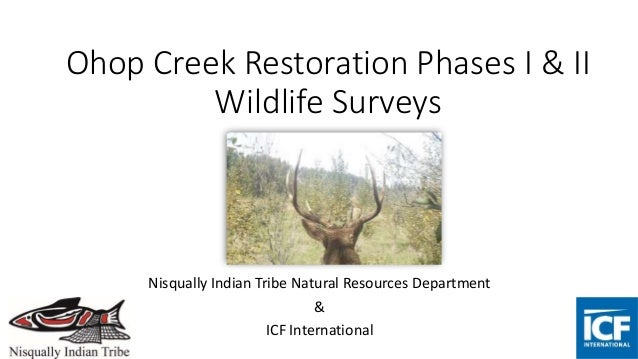 Ohop Creek Restoration Phases I & II Wildlife Surveys Nisqually Indian Tribe Natural Resources Department & ICF Internatio...