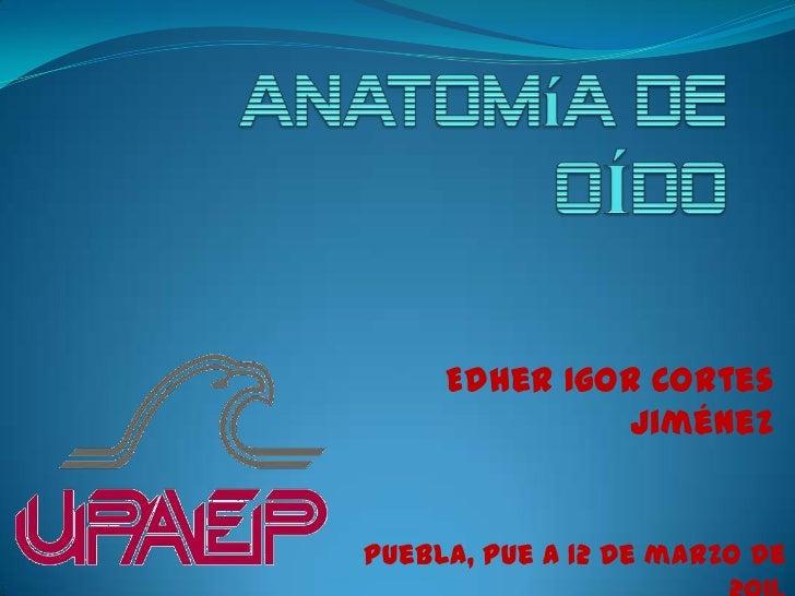 anatomía de OÍDO<br />Edher Igor Cortes Jiménez<br />Puebla, Pue a 12 de marzo de 2011.<br />
