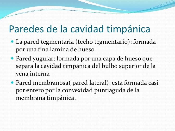Paredes de la cavidad timpánica<br />La pared tegmentaria (techo tegmentario): formada por una fina lamina de hueso.<br />...