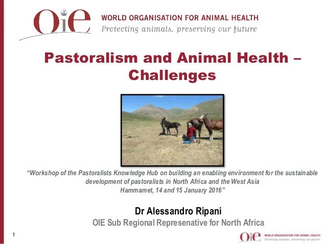 "Pastoralism and Animal Health – Challenges ""Workshop of the Pastoralists Knowledge Hub on building an enabling environment..."