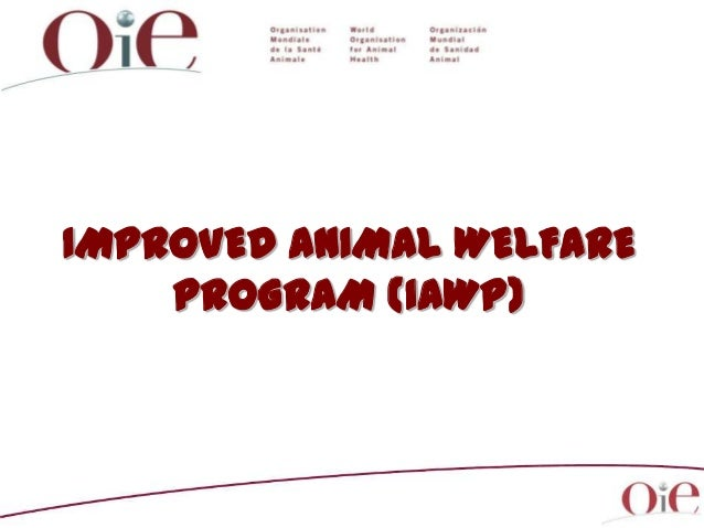 IMPROVED ANIMAL WELFARE PROGRAM (IAWP)
