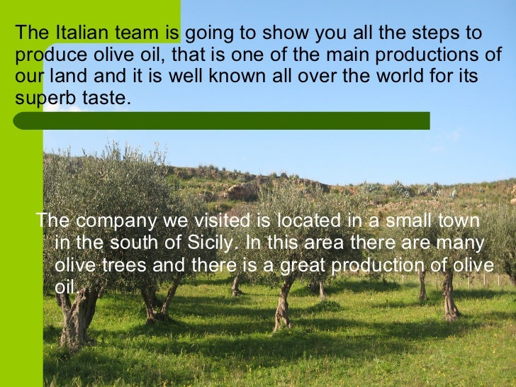 <ul><li>The company we visited is located in a small town in the south of Sicily. In this area there are many olive trees ...