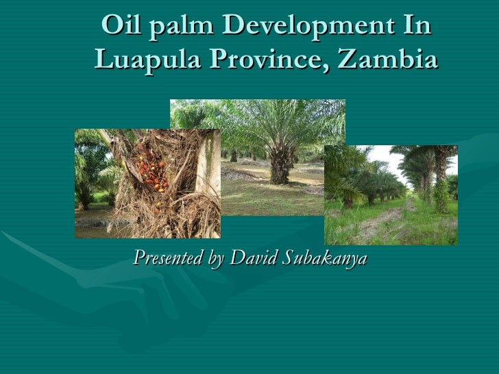 Oil palm Development In Luapula Province, Zambia Presented by David Subakanya