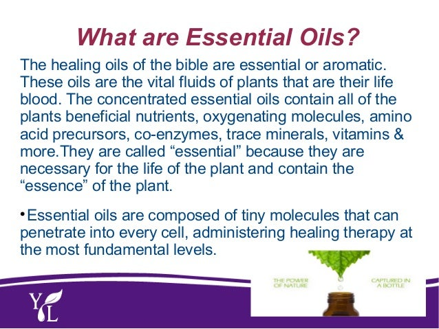 Oils of the Bible Class