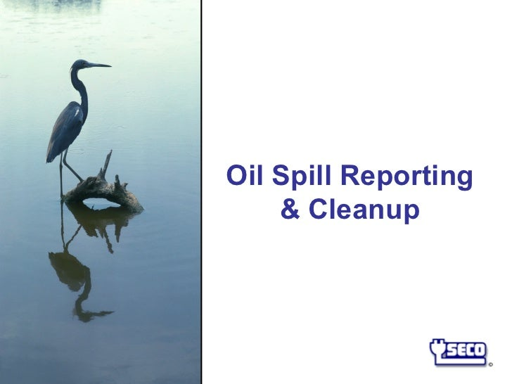 Oil Spill Reporting    & Cleanup