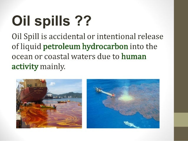 oil spilled at sea essay