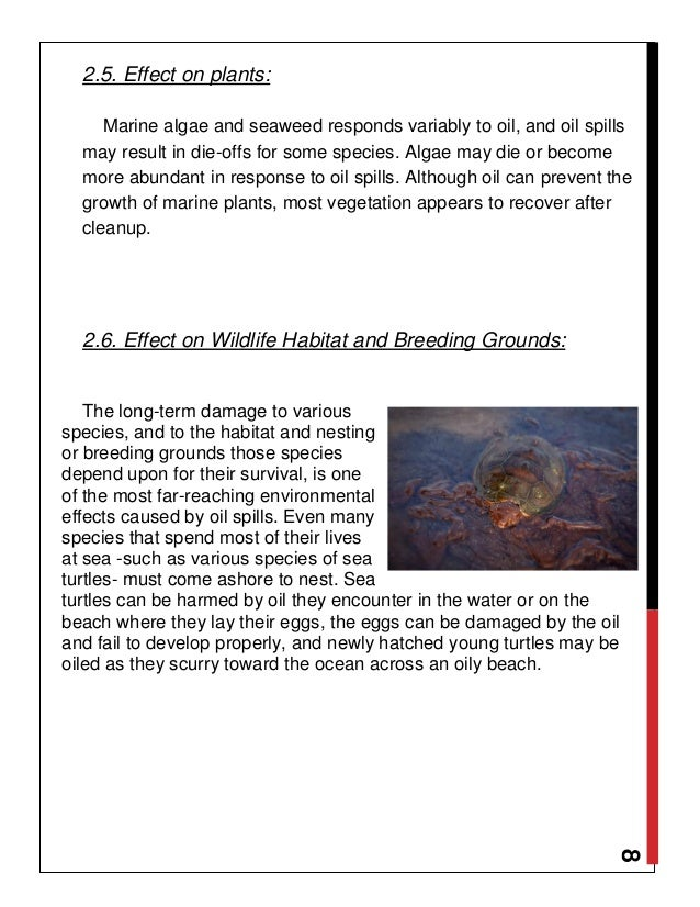 serious damage to wildlife caused by the exxon valdez oil spill Household willingness to pay to prevent another exxon valdez type oil spill,  caused by the exxon valdez oil spill and  the spill on wildlife.