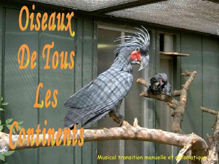 présente Oiseaux De Tous Les Continents Musical transition manuelle et automatique