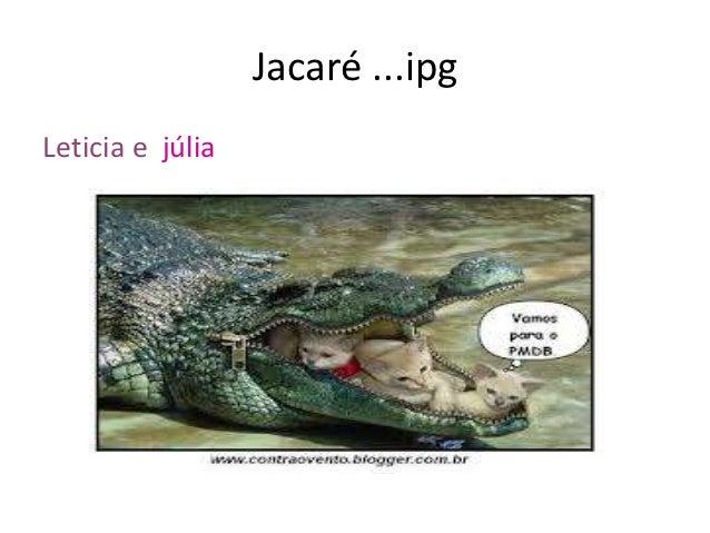 Jacaré ...ipgLeticia e júlia