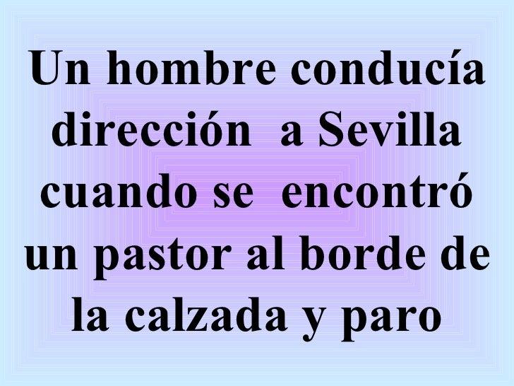 Un hombre conducía dirección  a Sevilla cuando se  encontró un pastor al borde de la calzada y paro
