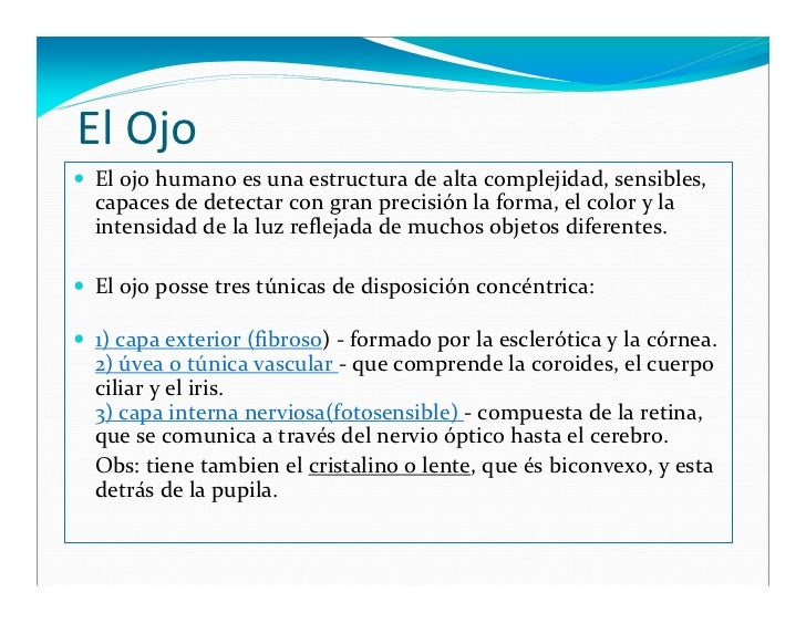 de medicina c tedra de histologia histologia del ojo cristiane