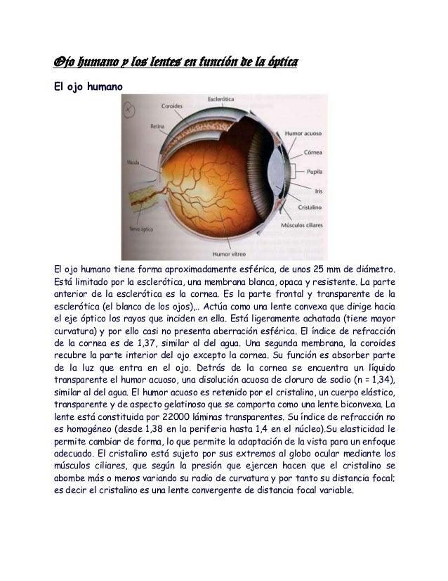 Ojo humano y los lentes en función de la ópticaEl ojo humanoEl ojo humano tiene forma aproximadamente esférica, de unos 25...