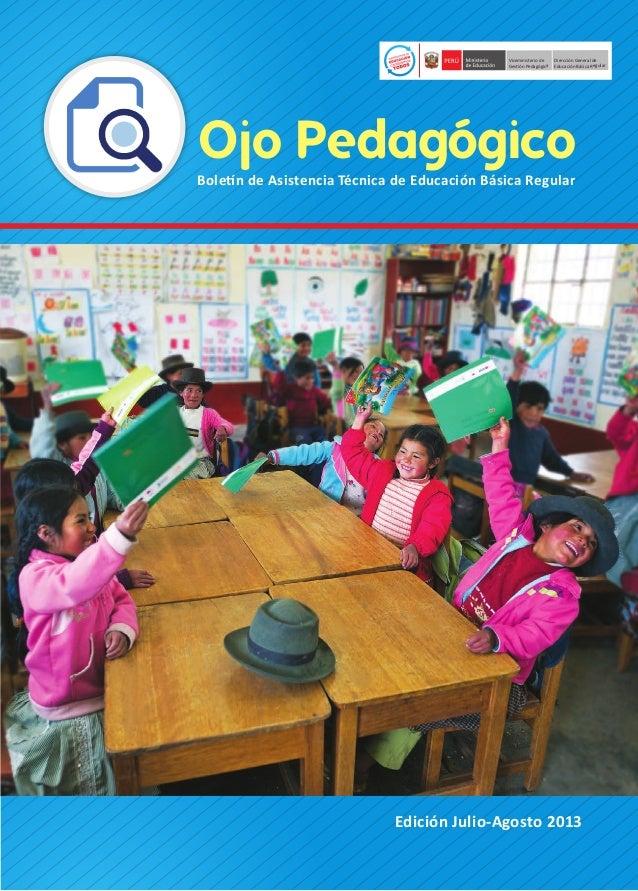 Viceministerio de Gestión Pedagógica  Dirección General de Educación Básica Regular Educación Básica Regular  Ojo Pedagógi...