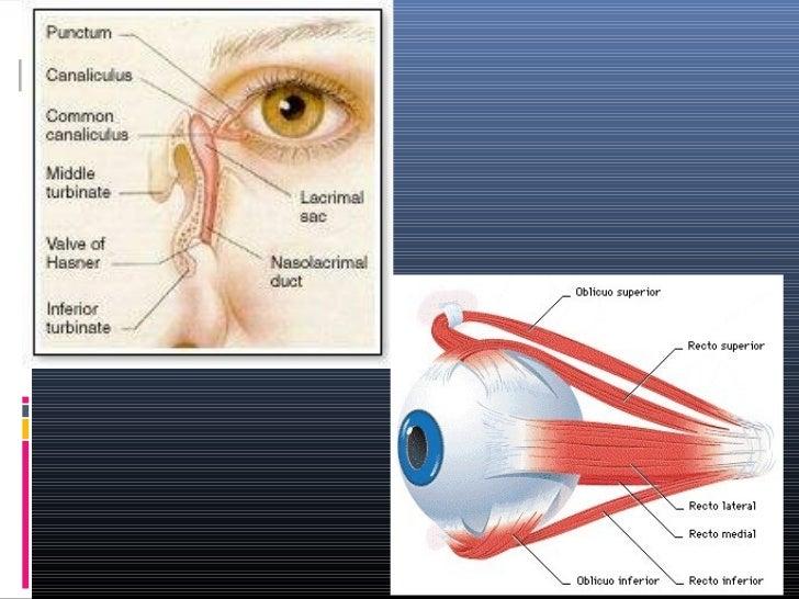 escozor de ojos y vision diabetes borrosa