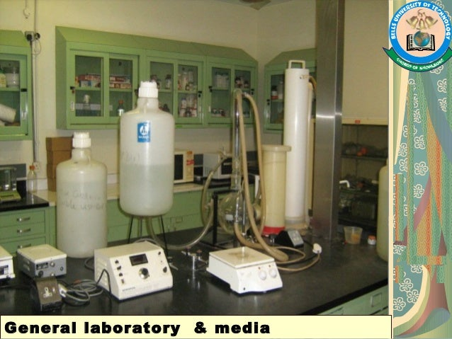the many different techniques used to sterilize culture media in a laboratory procedure We have used it with great success, not just in the tissue culture room, but also in the animal procedure room (without animals) and even in our offices, which smell fresh afterwards if you have problems with contamination, ozilla is the solution.