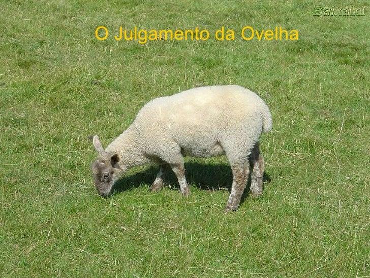 O Julgamento da Ovelha