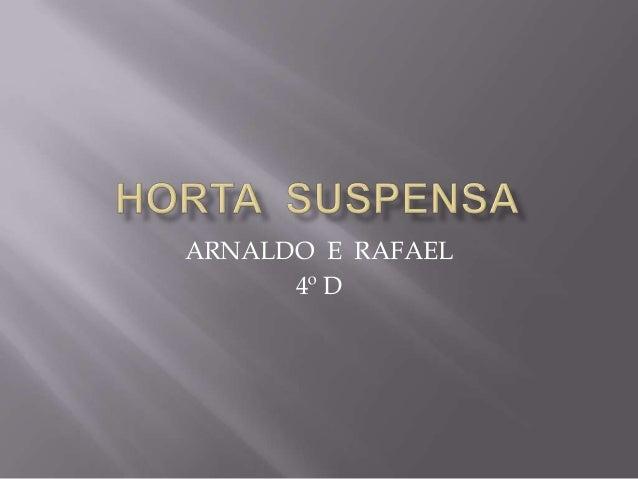 ARNALDO E RAFAEL      4º D