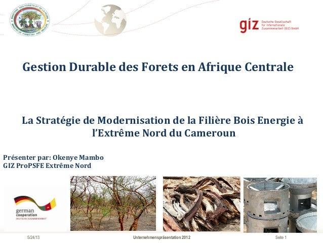 Seite 1Unternehmenspräsentation 20125/24/13Gestion Durable des Forets en Afrique Centrale  La Stratégie...
