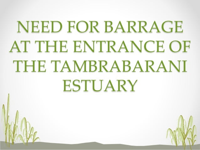 NEED FOR BARRAGE AT THE ENTRANCE OF THE TAMBRABARANI ESTUARY