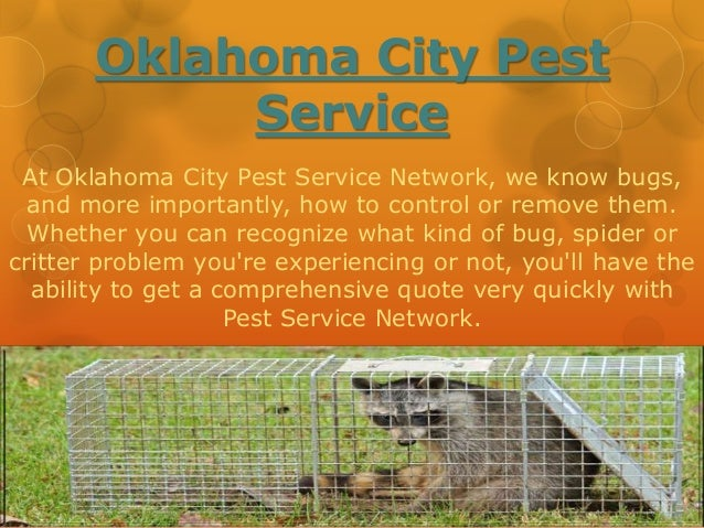 Oklahoma City Pest  Service  At Oklahoma City Pest Service Network, we know bugs,  and more importantly, how to control or...
