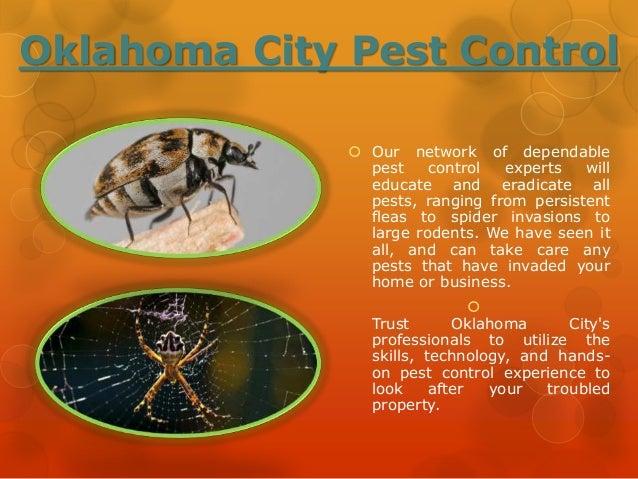 Oklahoma City Pest Treatment Slide 2