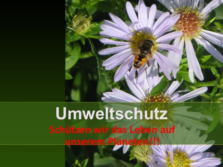 UmweltschutzSchützen wir das Leben auf   unserem Planeten!!!